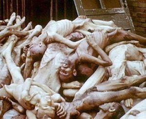 [holocausto+6.jpg]